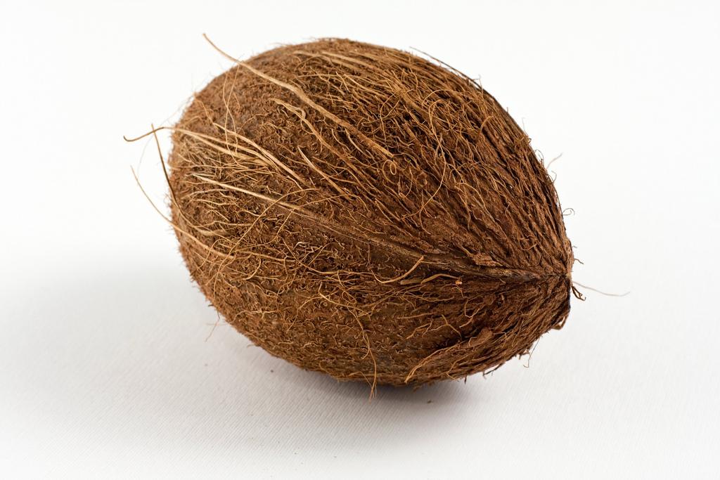 Filtre coco