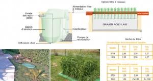 filtre planté SMVE EYVI BSFR