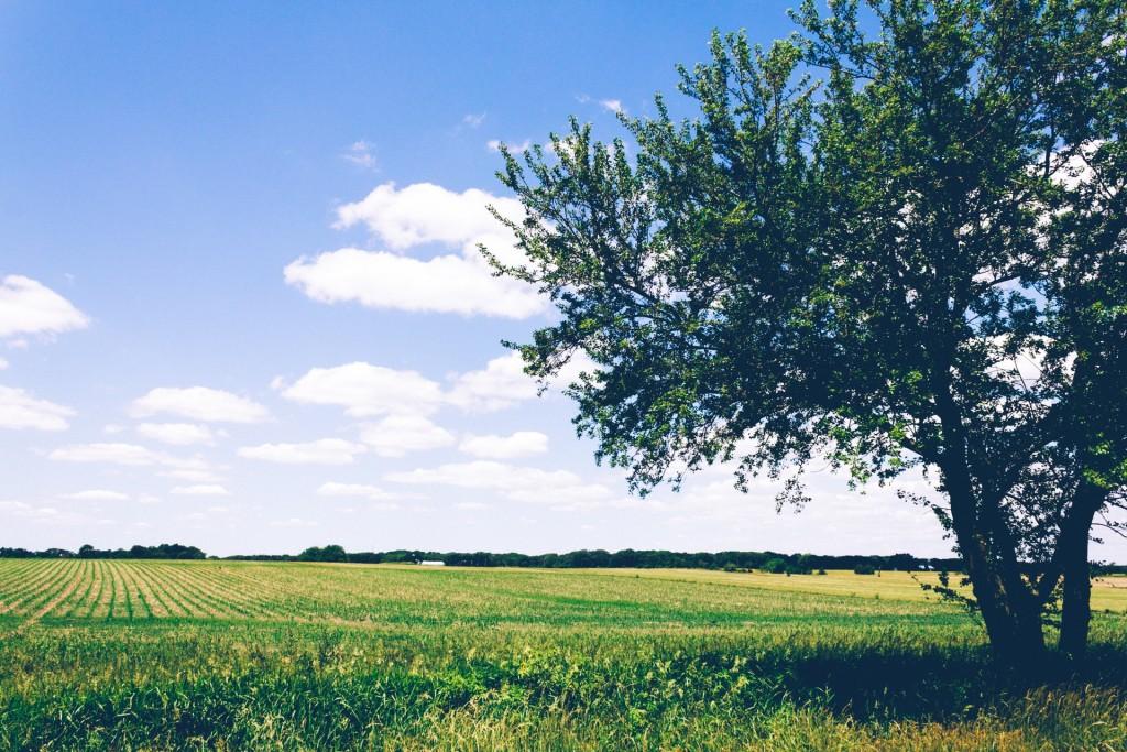 L'assainissement autonome est indispensable à la protection de l'environnement !